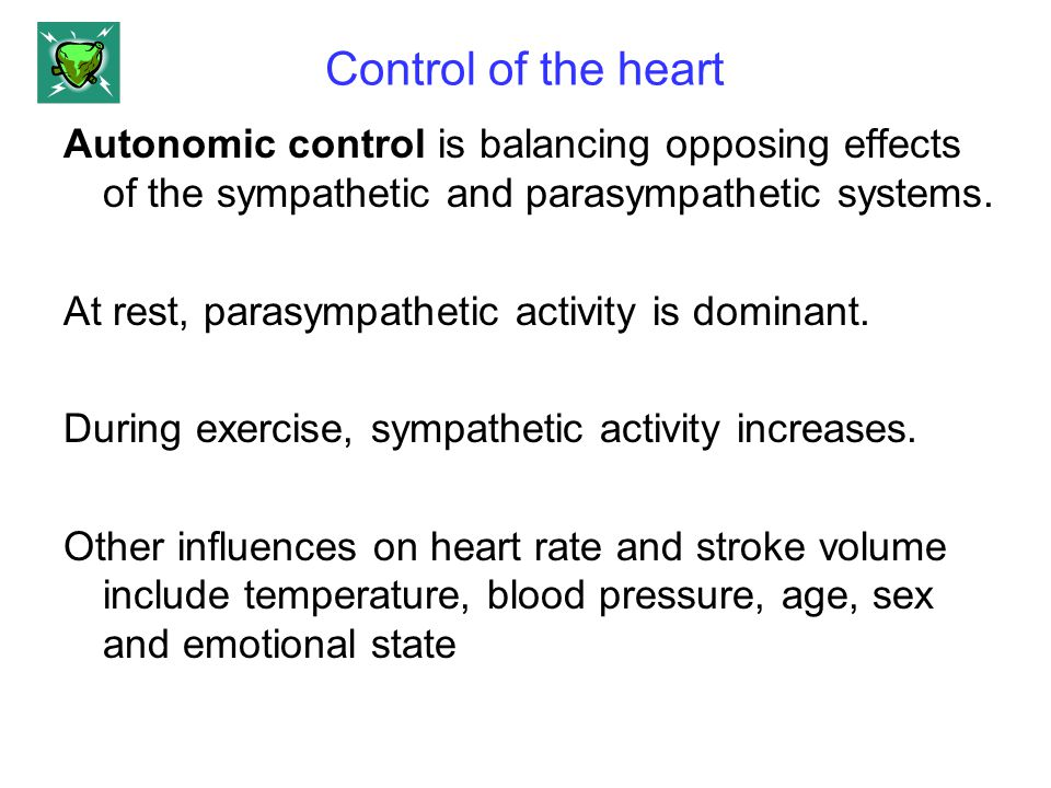 Control of the heart Autonomic control is balancing opposing effects of the sympathetic and parasympathetic systems. At rest, parasympathetic activity
