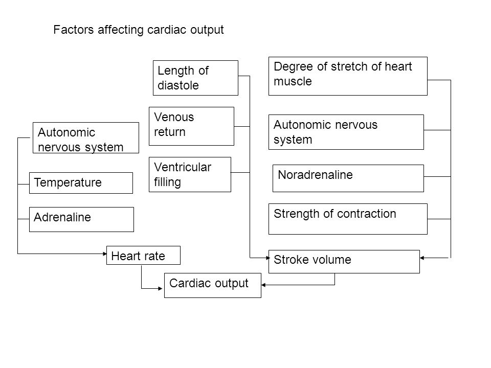 Ventricular filling Venous return Length of diastole Strength of contraction Noradrenaline Heart rate Autonomic nervous system Stroke volume Degree of