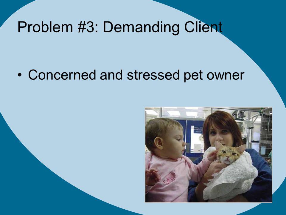 Problem #3: Demanding Client Concerned and stressed pet owner
