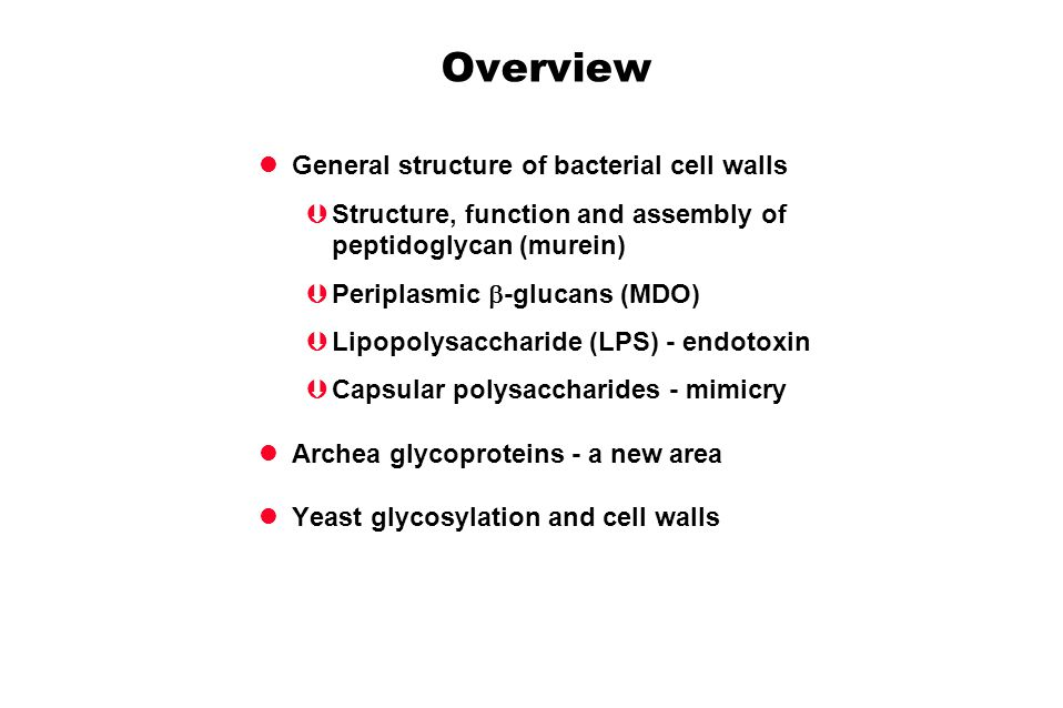 Overview General structure of bacterial cell walls Structure, function and assembly of peptidoglycan (murein) Periplasmic -glucans (MDO) Lipopolysaccharide (LPS) - endotoxin Capsular polysaccharides - mimicry Archea glycoproteins - a new area Yeast glycosylation and cell walls