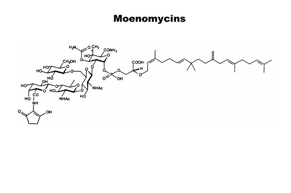 Moenomycins