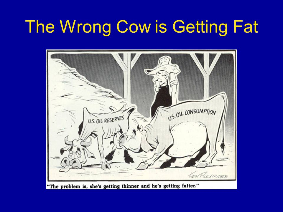 The Wrong Cow is Getting Fat