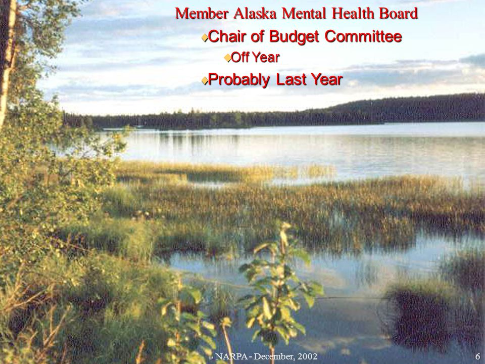 Red Shirt Member Alaska Mental Health Board Chair of Budget Committee Chair of Budget Committee Off Year Off Year Probably Last Year Probably Last Yea