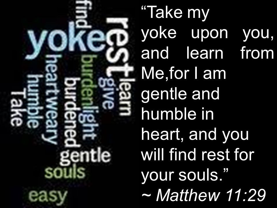Take my yoke upon you, and learn from Me,for I am gentle and humble in heart, and you will find rest for your souls.