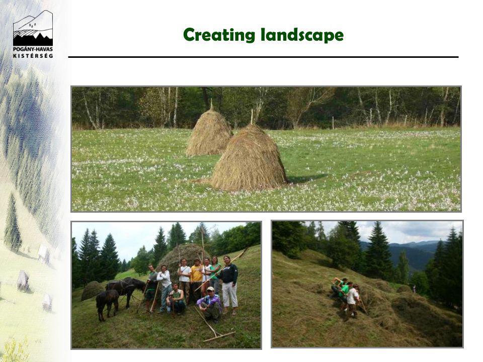 Creating landscape