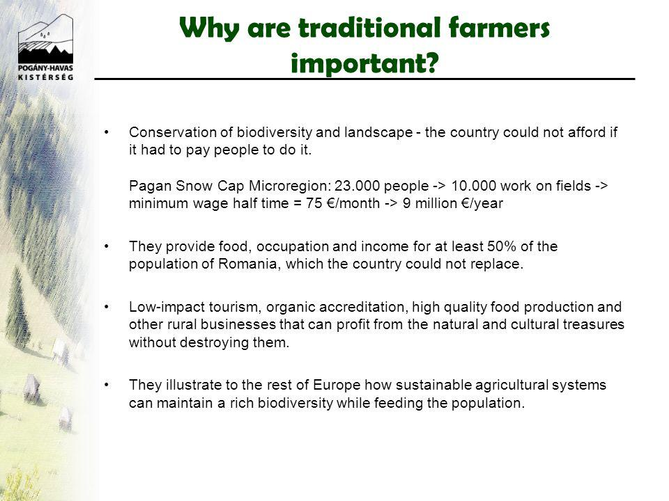 Why are traditional farmers important.