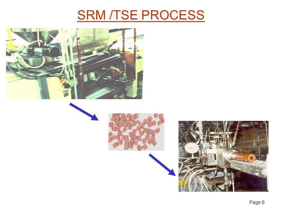 Page 6 SRM /TSE PROCESS