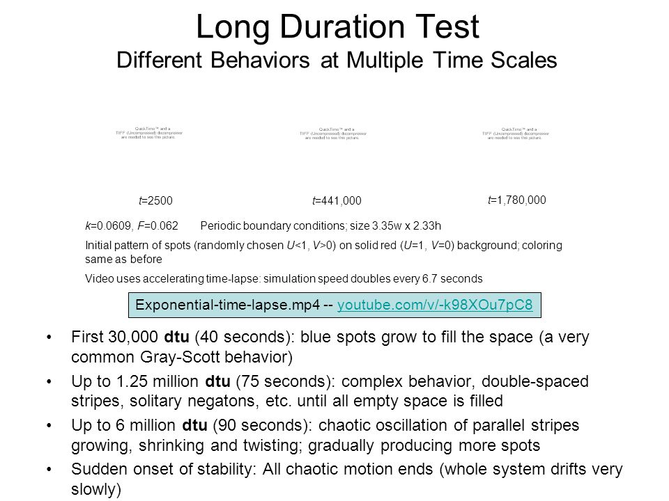 Long Duration Test Different Behaviors at Multiple Time Scales First 30,000 dtu (40 seconds): blue spots grow to fill the space (a very common Gray-Scott behavior) Up to 1.25 million dtu (75 seconds): complex behavior, double-spaced stripes, solitary negatons, etc.