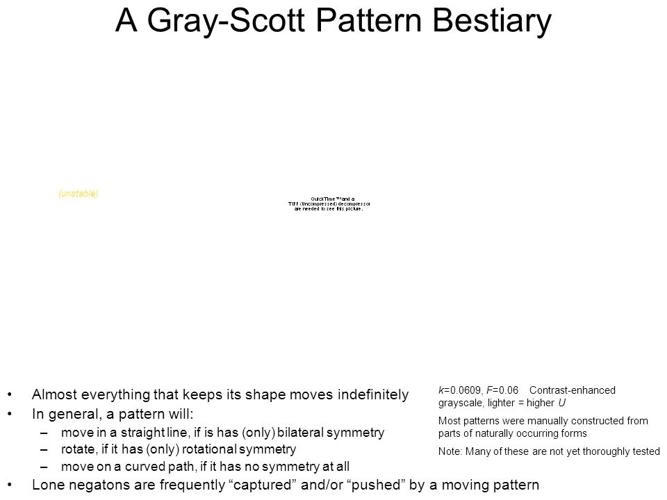 A Gray-Scott Pattern Bestiary Almost everything that keeps its shape moves indefinitely In general, a pattern will: –move in a straight line, if is has (only) bilateral symmetry –rotate, if it has (only) rotational symmetry –move on a curved path, if it has no symmetry at all Lone negatons are frequently captured and/or pushed by a moving pattern k=0.0609, F=0.06 Contrast-enhanced grayscale, lighter = higher U Most patterns were manually constructed from parts of naturally occurring forms Note: Many of these are not yet thoroughly tested (unstable)