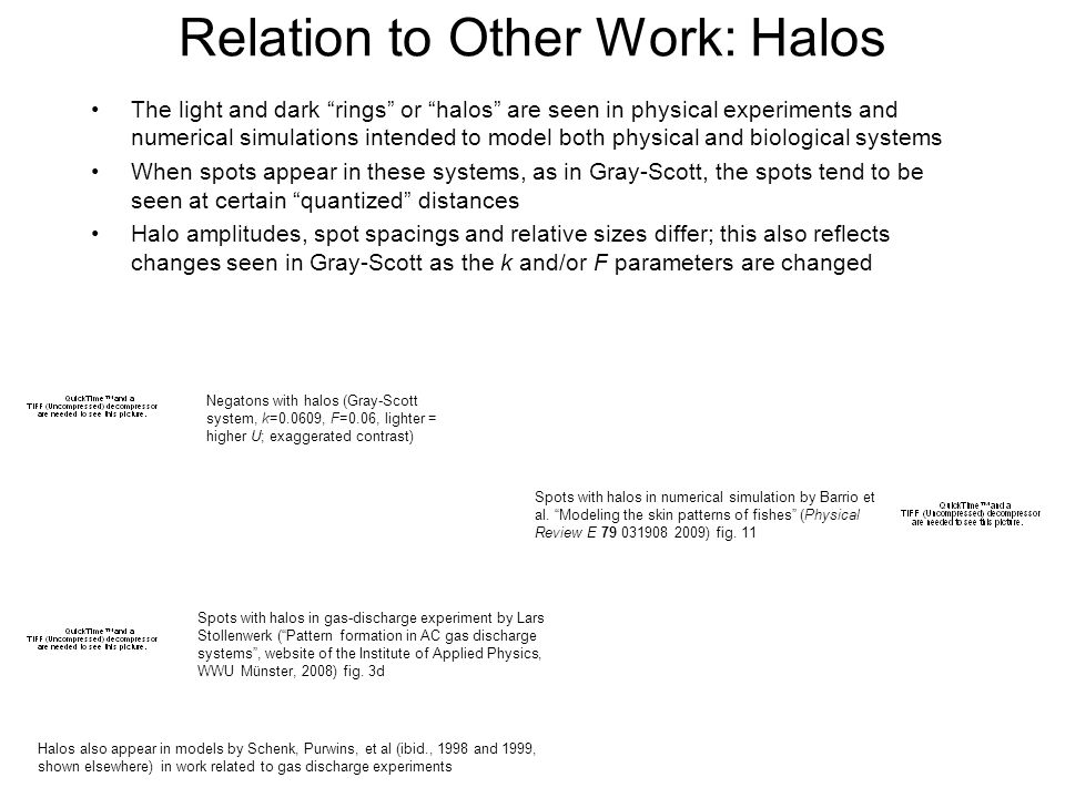 Relation to Other Work: Halos The light and dark rings or halos are seen in physical experiments and numerical simulations intended to model both physical and biological systems When spots appear in these systems, as in Gray-Scott, the spots tend to be seen at certain quantized distances Halo amplitudes, spot spacings and relative sizes differ; this also reflects changes seen in Gray-Scott as the k and/or F parameters are changed Spots with halos in gas-discharge experiment by Lars Stollenwerk (Pattern formation in AC gas discharge systems, website of the Institute of Applied Physics, WWU Münster, 2008) fig.