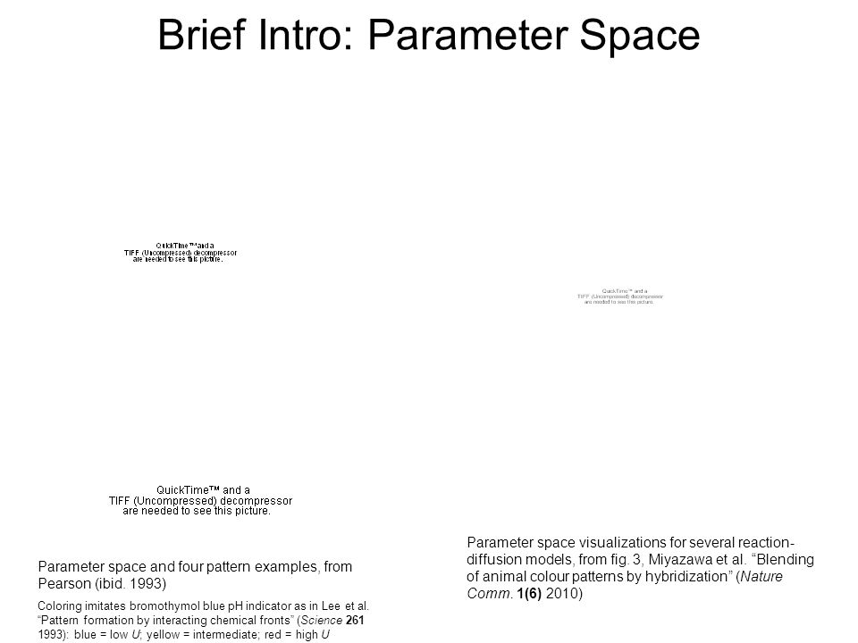 Brief Intro: Parameter Space Parameter space visualizations for several reaction- diffusion models, from fig. 3, Miyazawa et al. Blending of animal co