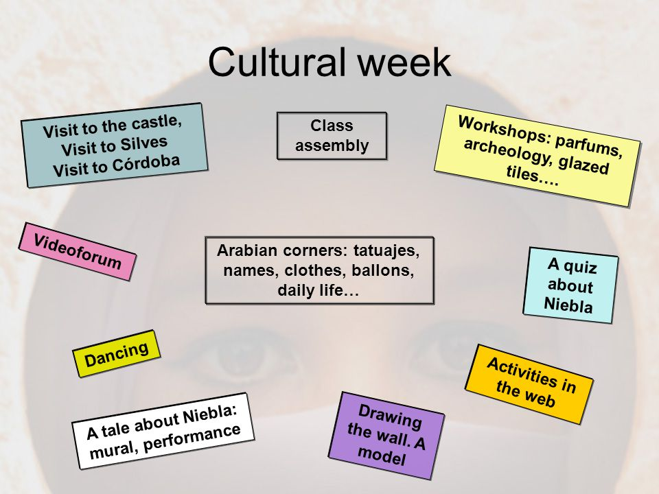 Cultural week Visit to the castle, Visit to Silves Visit to Córdoba Class assembly Activities in the web Drawing the wall.