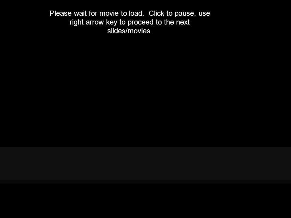 Please wait for movie to load. Click to pause, use right arrow key to proceed to the next slides/movies.