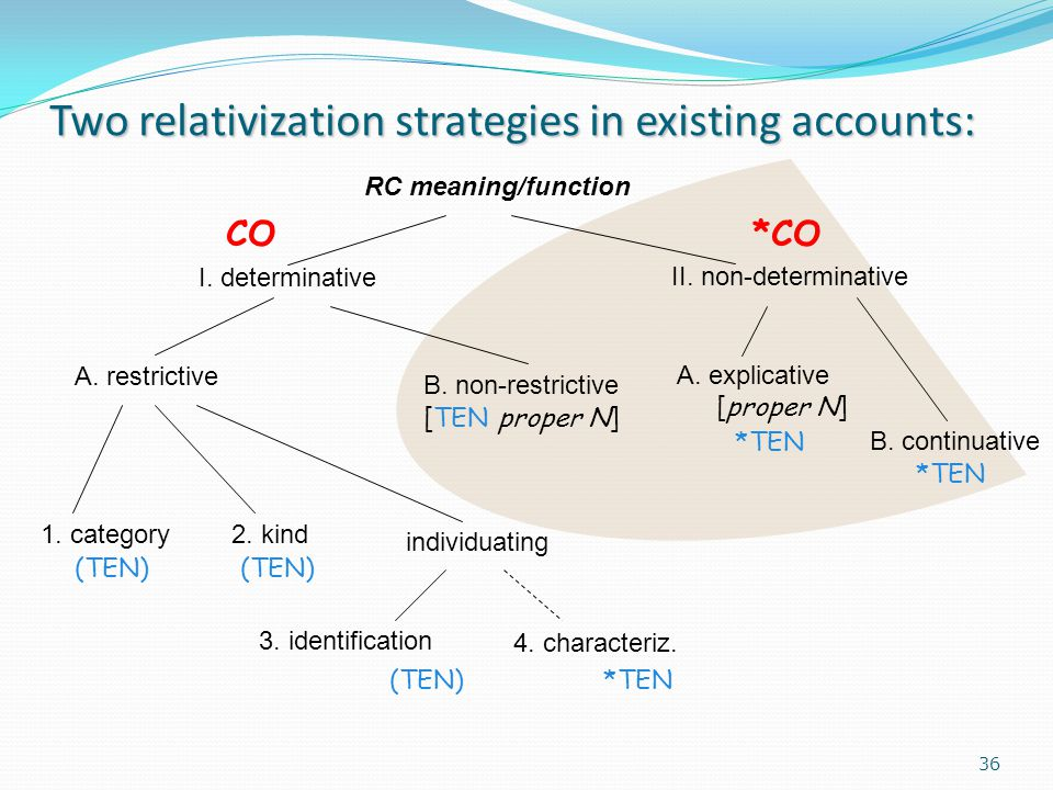Two relativization strategies in existing accounts: RC meaning/function I.