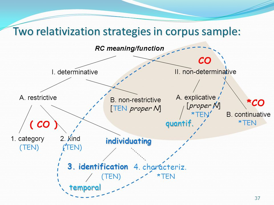 Two relativization strategies in corpus sample: RC meaning/function I.