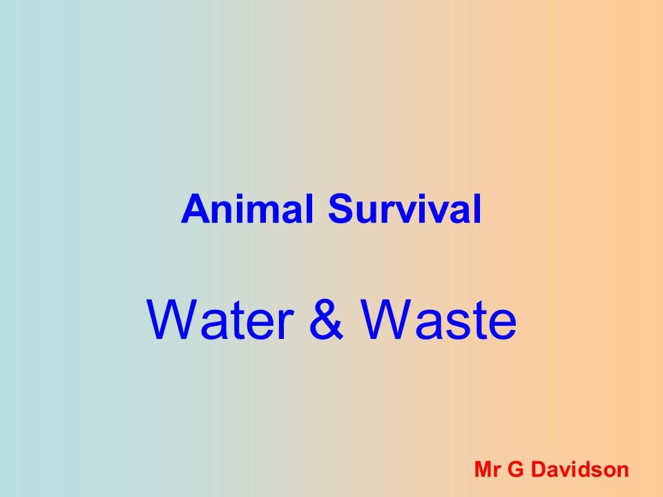 Animal Survival Water & Waste Mr G Davidson