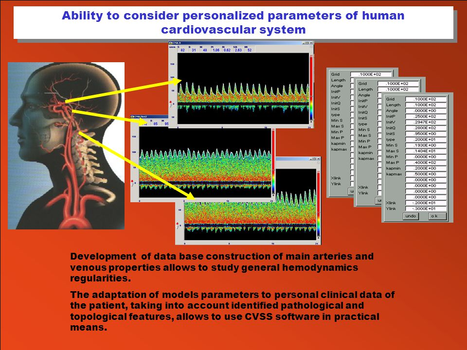 Ability to consider personalized parameters of human cardiovascular system Development of data base construction of main arteries and venous propertie
