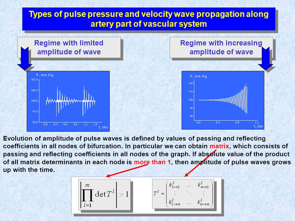 Types of pulse pressure and velocity wave propagation along artery part of vascular system Regime with limited amplitude of wave Regime with increasing amplitude of wave Evolution of amplitude of pulse waves is defined by values of passing and reflecting coefficients in all nodes of bifurcation.