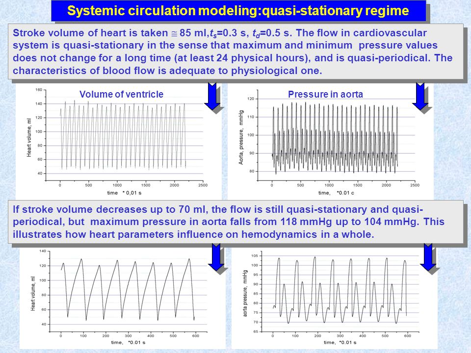 Systemic circulation modeling:quasi-stationary regime Stroke volume of heart is taken 85 ml,t s =0.3 s, t d =0.5 s.
