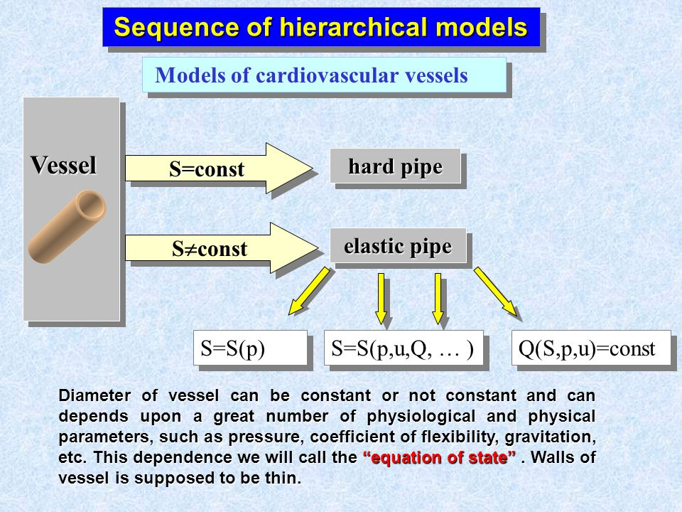 Sequence of hierarchical models Models of cardiovascular vessels VesselVessel hard pipe elastic pipe S=constS=const S const S=S(p) S=S(p,u,Q, … ) Diameter of vessel can be constant or not constant and can depends upon a great number of physiological and physical parameters, such as pressure, coefficient of flexibility, gravitation, etc.