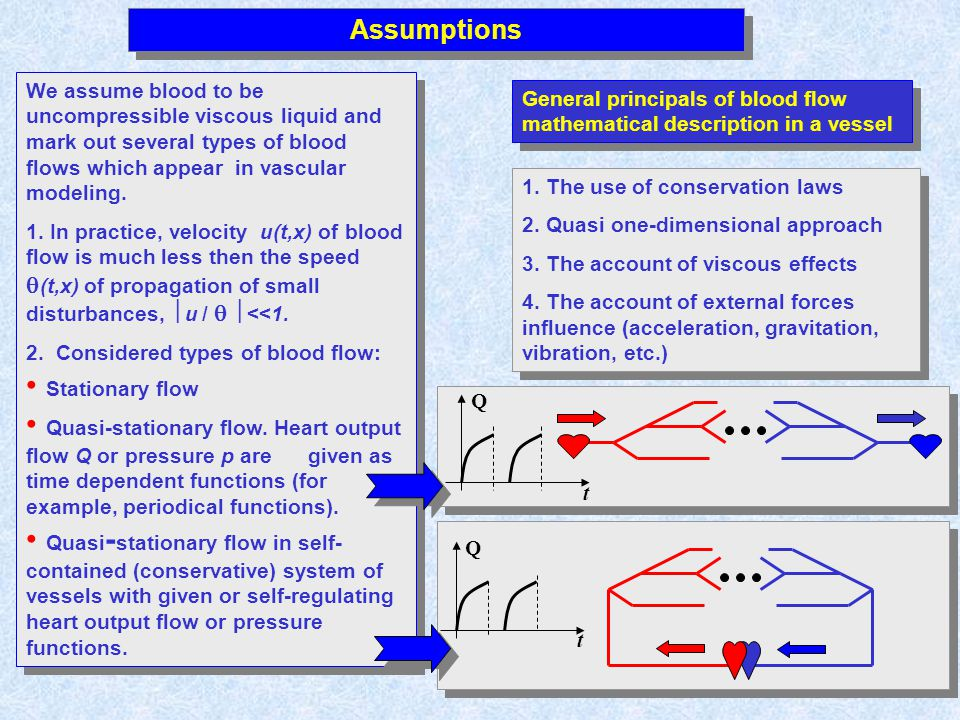 Assumptions We assume blood to be uncompressible viscous liquid and mark out several types of blood flows which appear in vascular modeling. 1. In pra