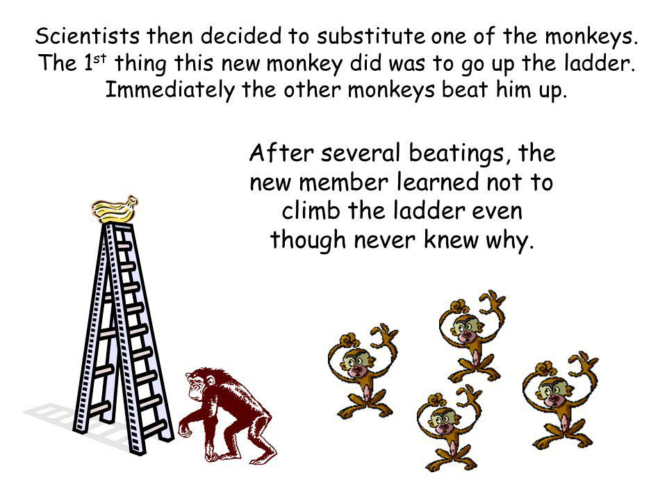 Scientists then decided to substitute one of the monkeys.
