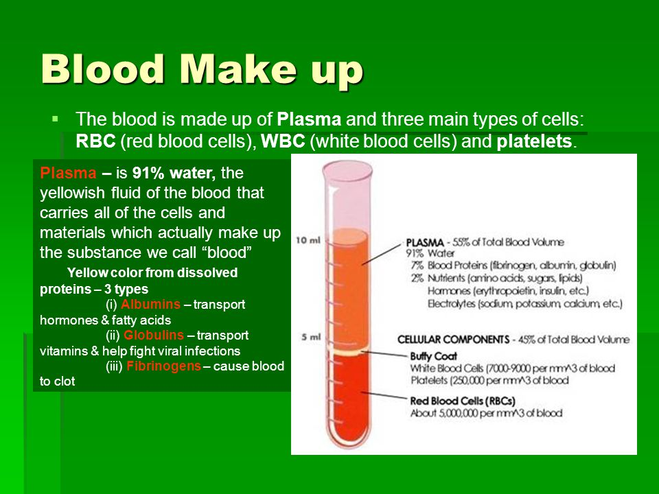 Blood Make up The blood is made up of Plasma and three main types of cells: RBC (red blood cells), WBC (white blood cells) and platelets. Plasma – is