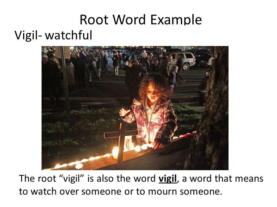 Root Word Example The root vigil is also the word vigil, a word that means to watch over someone or to mourn someone.