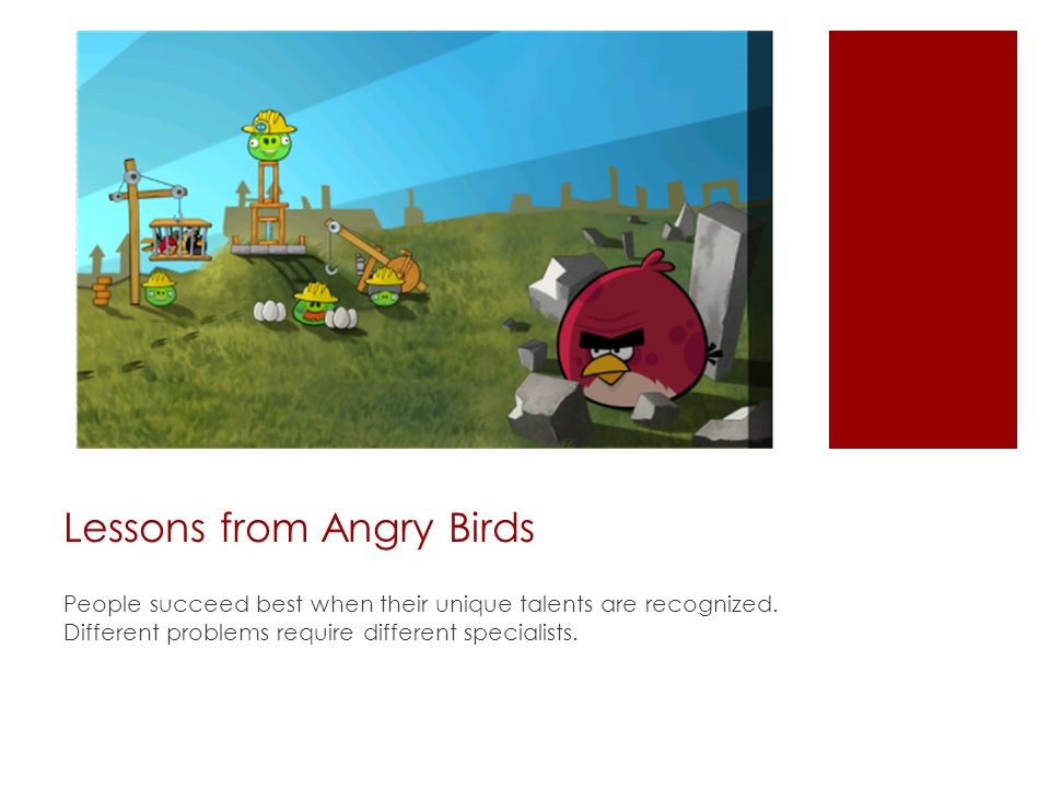 Lessons from Angry Birds People succeed best when their unique talents are recognized.