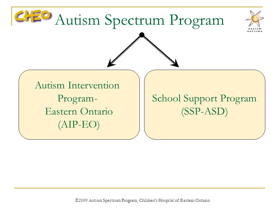 Autism Spectrum Program Autism Intervention Program- Eastern Ontario (AIP-EO) School Support Program (SSP-ASD) ©2009 Autism Spectrum Program, Childrens Hospital of Eastern Ontario