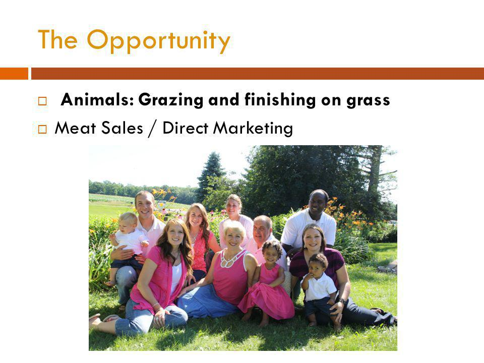 The Opportunity Animals: Grazing and finishing on grass Meat Sales / Direct Marketing