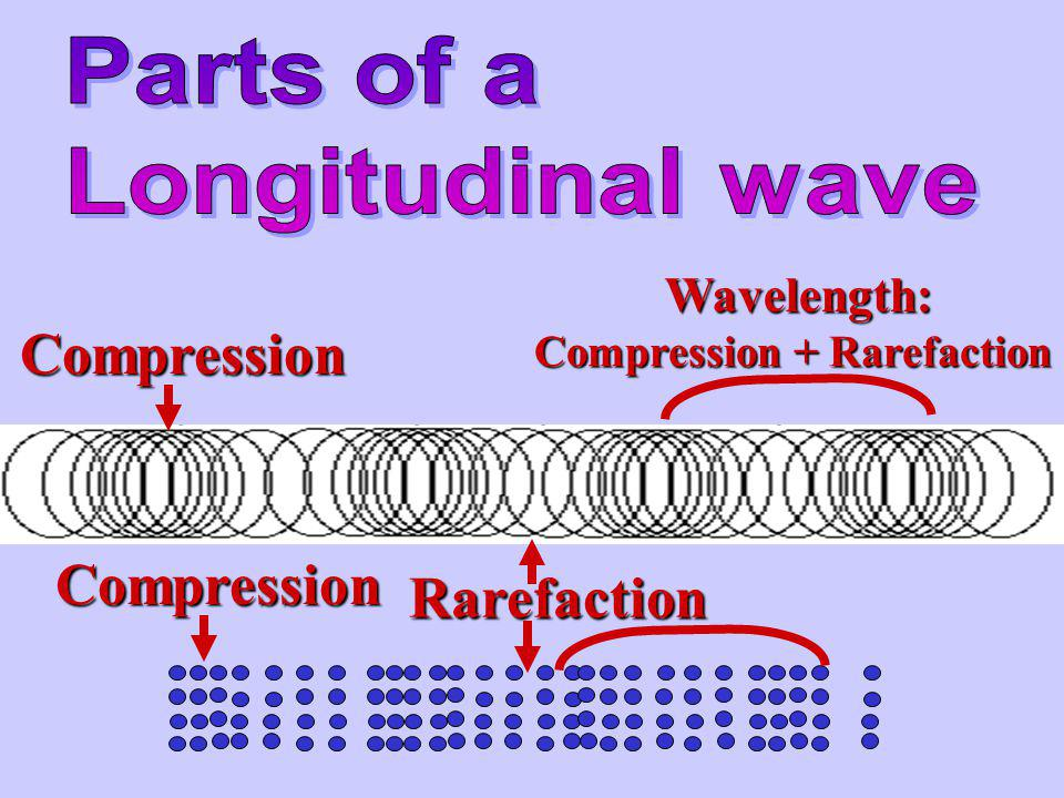 Medium moves parallel to the direction of the wave Ex. – a slinky or metal spring A) Compressions: where the molecules are crowded together B) Rarefac