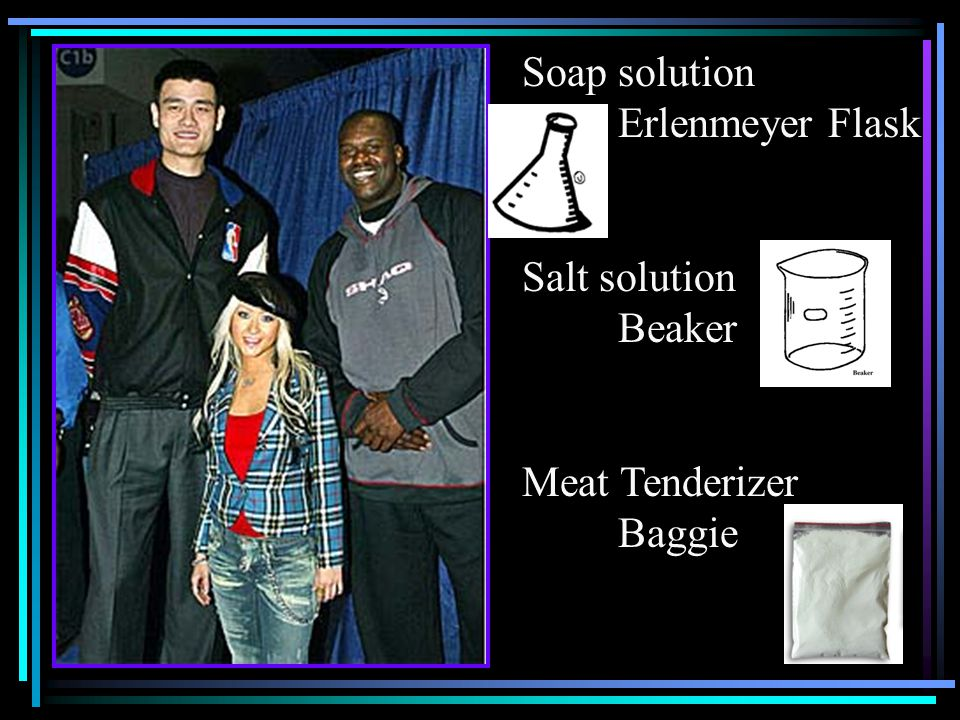 Soap solution Erlenmeyer Flask Salt solution Beaker Meat Tenderizer Baggie
