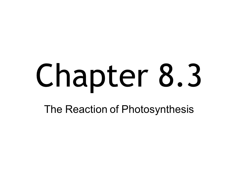 Chapter 8.3 The Reaction of Photosynthesis