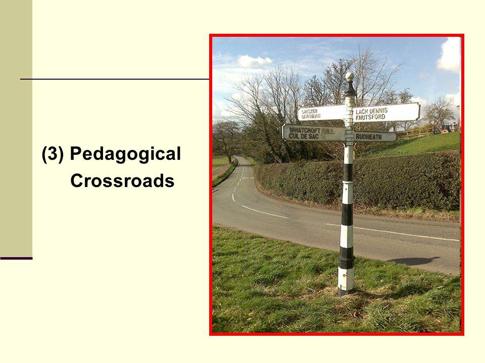 (3) Pedagogical Crossroads
