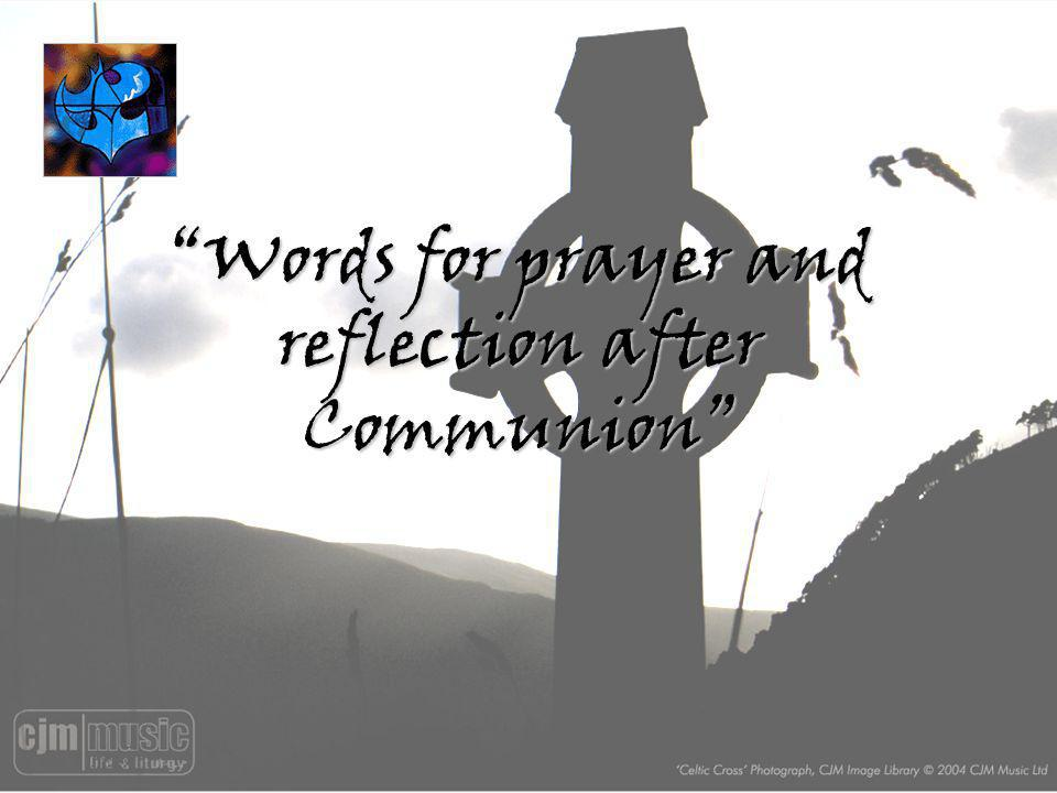 Words for prayer and reflection after Communion