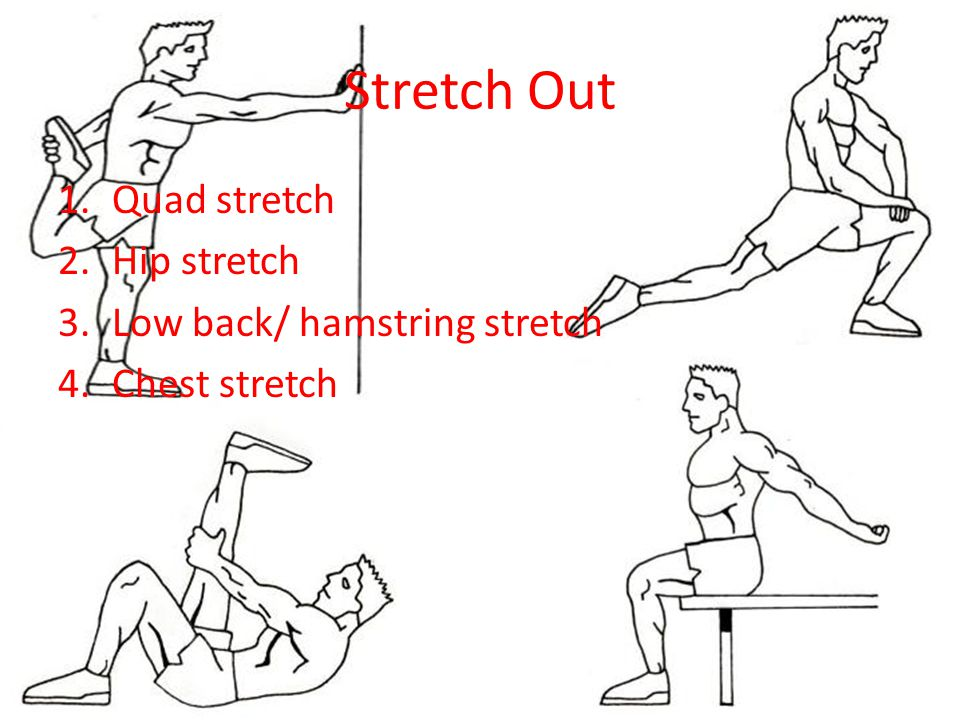 Stretch Out 1.Quad stretch 2.Hip stretch 3.Low back/ hamstring stretch 4.Chest stretch
