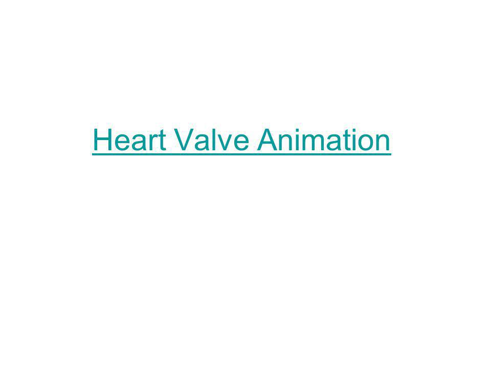 Heart Valve Animation