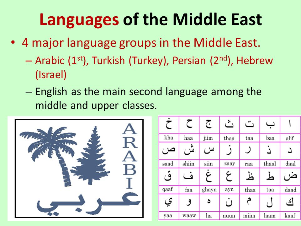 Languages of the Middle East 4 major language groups in the Middle East. – Arabic (1 st ), Turkish (Turkey), Persian (2 nd ), Hebrew (Israel) – Englis