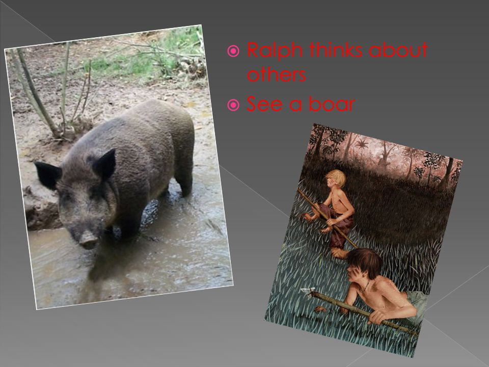 Hunting boar and exhilaration of chase