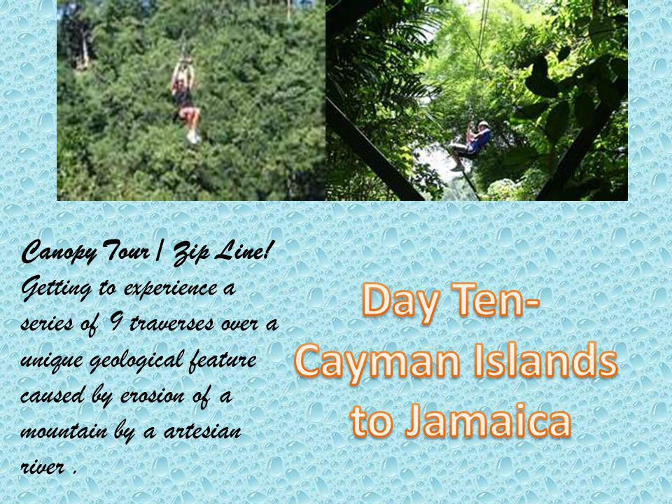 Canopy Tour / Zip Line! Getting to experience a series of 9 traverses over a unique geological feature caused by erosion of a mountain by a artesian r
