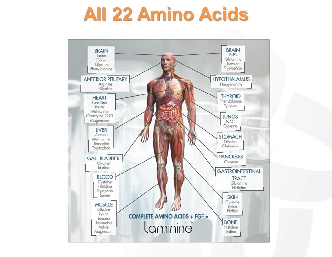 All 22 Amino Acids
