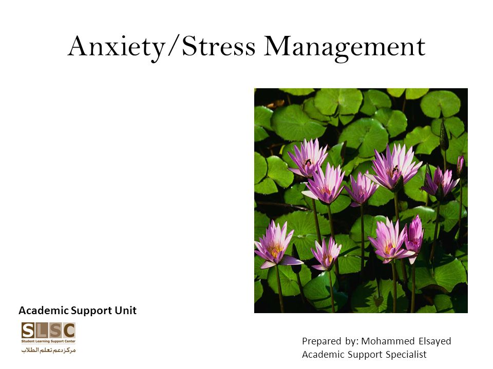 Anxiety/Stress Management Academic Support Unit Prepared by: Mohammed Elsayed Academic Support Specialist