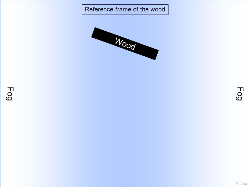 Boat Fog Wood Reference frame of the wood W. Rau