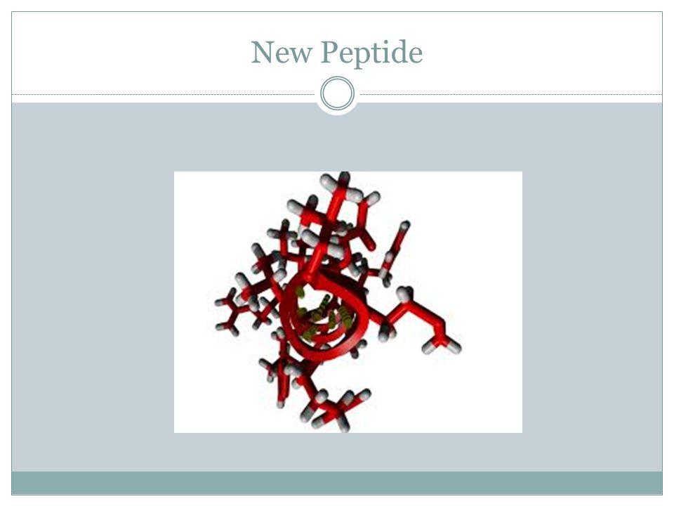 New Peptide