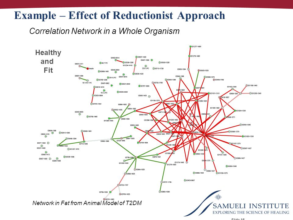 Slide 16 Healthy and Fit Example – Effect of Reductionist Approach Correlation Network in a Whole Organism Network in Fat from Animal Model of T2DM