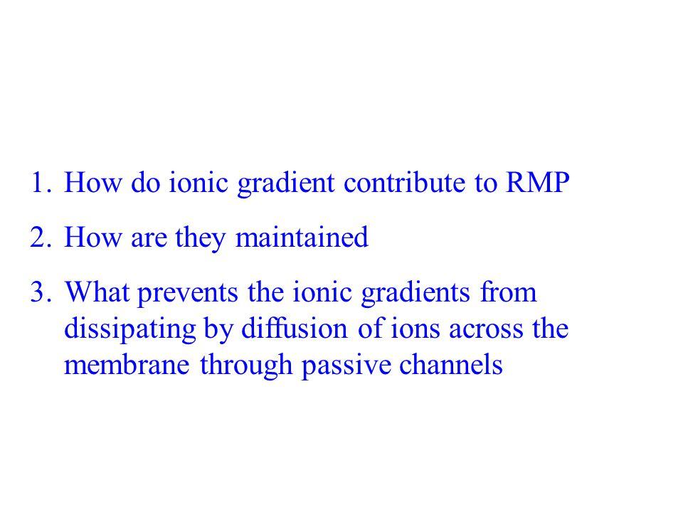 Resting Membrane Potential V r = V in [ Normal range -60mV ---- -70mV (Neurons)] + Na + K No ionic movement across the cell membrane