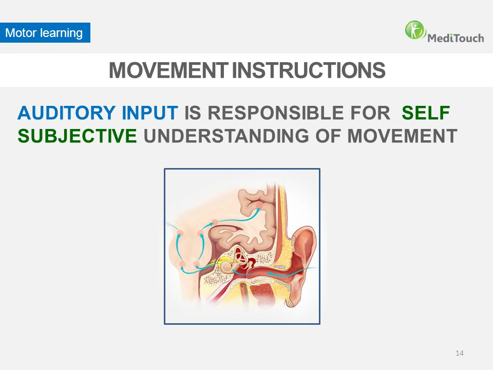 14 MOVEMENT INSTRUCTIONS Motor learning AUDITORY INPUT IS RESPONSIBLE FOR SELF SUBJECTIVE UNDERSTANDING OF MOVEMENT