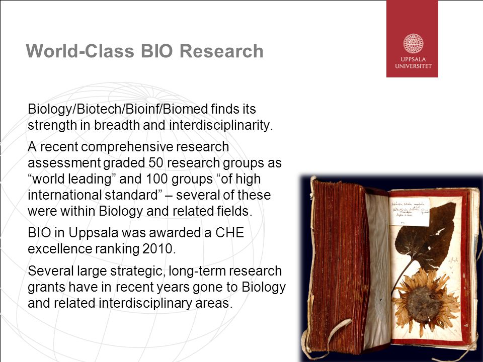 World-Class BIO Research Biology/Biotech/Bioinf/Biomed finds its strength in breadth and interdisciplinarity.
