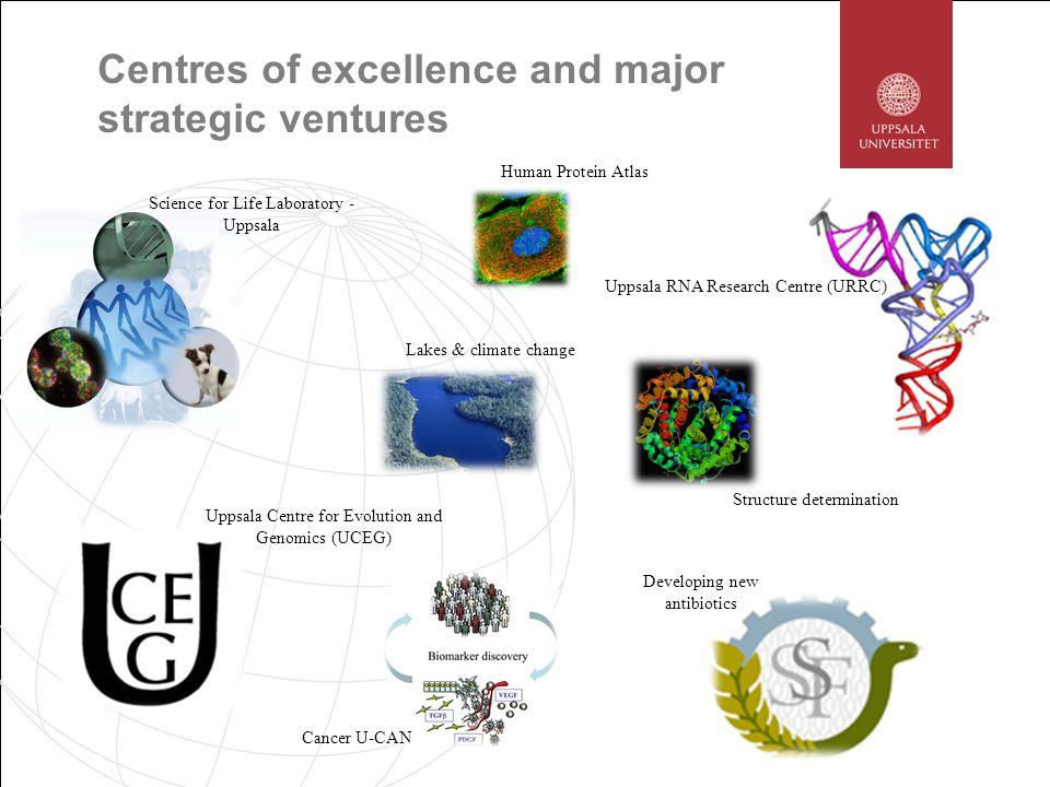 Uppsala RNA Research Centre (URRC) Centres of excellence and major strategic ventures Uppsala Centre for Evolution and Genomics (UCEG) Science for Life Laboratory - Uppsala Cancer U-CAN Developing new antibiotics Lakes & climate change Structure determination Human Protein Atlas